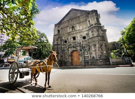 Cavalo Manila Filipinas espera turistas Foto stock © fazon1