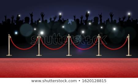 Paparazzi detective spionage sleutelgat mannen kleur Stockfoto © tiKkraf69