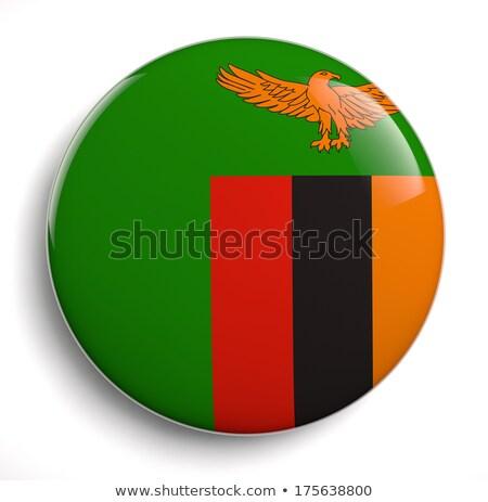 Zambia Flag Oval Button Stock photo © Bigalbaloo