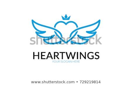 hart · vleugels · plek · illustratie - stockfoto © iconify