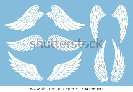 Sketches of angels in different colors Stock photo © bluering