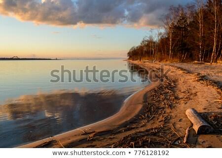 Fényes felhős égbolt horizont Balti-tenger Lettország Stock fotó © amok