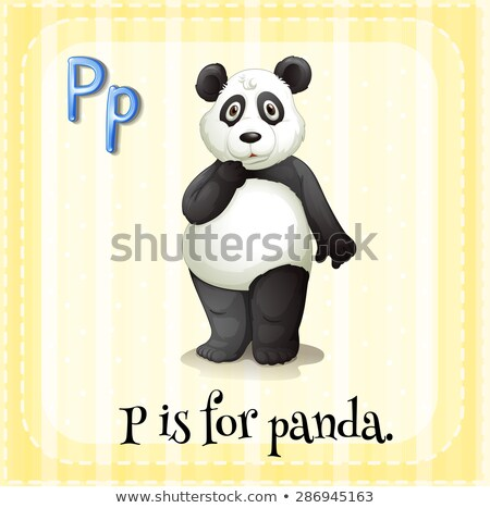 Flashcard letter P is for panda Stock photo © bluering