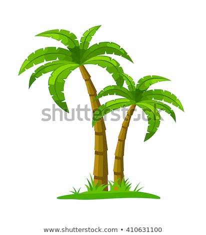 A sunny weather with coconut trees Stock photo © bluering