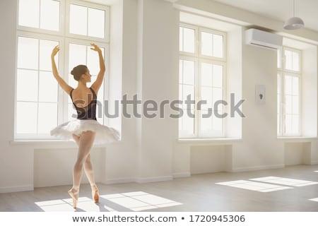 ballerina · poseren · dans · hal · prachtig · glanzend - stockfoto © bezikus