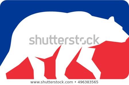 Grizzly bear spaceru sylwetka prostokąt retro ilustracja Zdjęcia stock © patrimonio