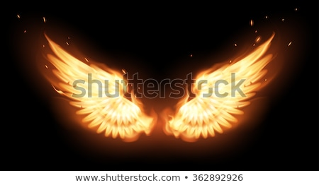 banner with wings phoenix stock photo © blackmoon979