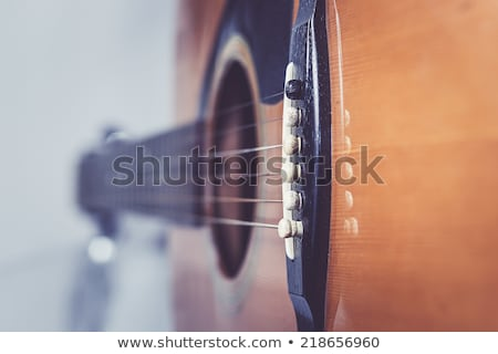 Jazz serenade. stock photo © Fisher