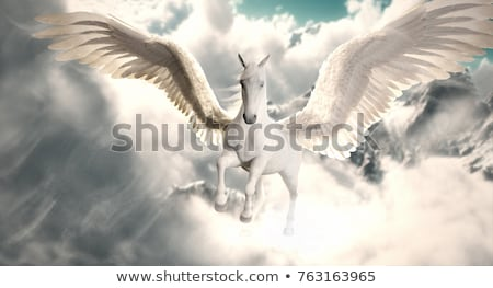 Flying horses. Stock photo © Fisher