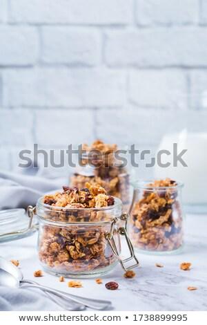 morning granola with hazelnuts, raisins and cranberries Stock photo © Digifoodstock