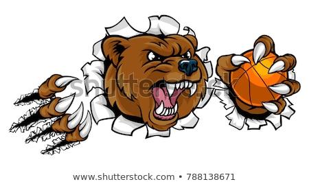 bear holding basketball ball breaking background stock photo © krisdog