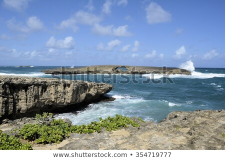 Hole in Rock, La'ie Point, Oahu, Hawaii Stock photo © kraskoff
