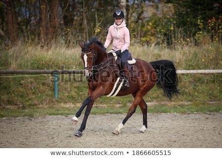 Vrouw helpen meisjes paardenrug meisje moeder Stockfoto © IS2