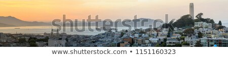 sunset panoramic views of telegraph hill and north beach neighborhoods with san francisco bay alcat stock photo © yhelfman