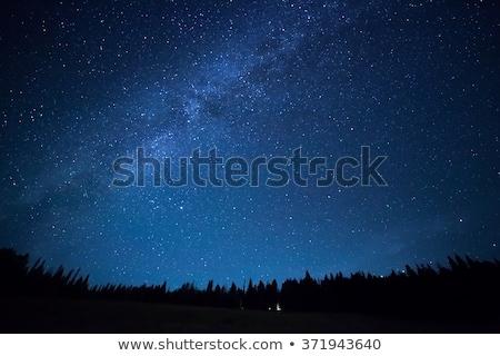 éjszaka csillagos ég fű föld sötét sziluett Stock fotó © romvo