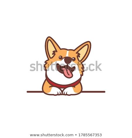 Cartoon puppy hond illustratie dier glimlachend Stockfoto © cthoman
