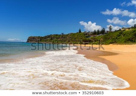 Bungan Beach Australia Stock photo © lovleah