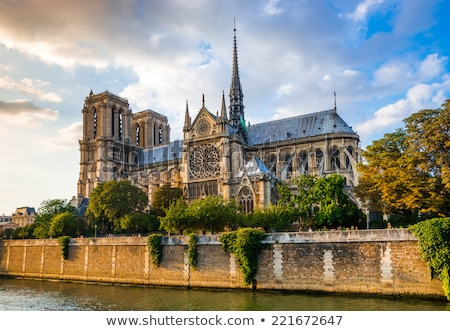 Cathédrale · Notre-Dame · France · ville · Paris · église - photo stock © vapi