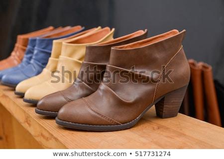 зима обувь сапогах стиль линия Сток-фото © frescomovie