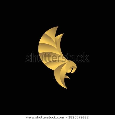 Kuş gaga göz logo vektör simge Stok fotoğraf © blaskorizov