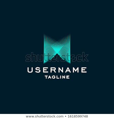 ロゴ 水色 手紙 アイコン ベクトル デザイン ストックフォト © blaskorizov