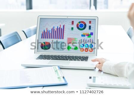 financeiro · analista · ilustração · pasta · gráfico · sucesso - foto stock © robuart
