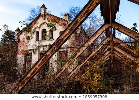 Eski saray terkedilmiş bölge Ukrayna orman Stok fotoğraf © Givaga
