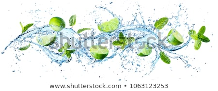 Mojito Water with Sliced Lime and Mint Leaves Stock photo © robuart