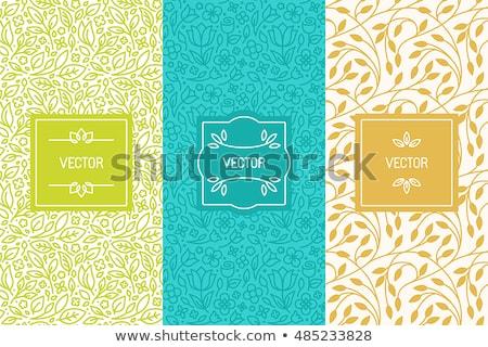 Seamless natural ornament patterns set Stock photo © lemony