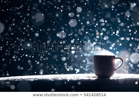 Rainy night in winter Stock photo © bluering