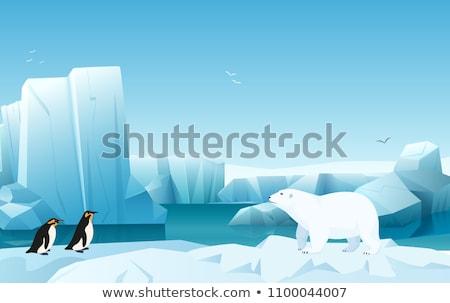 Pingvin sarkköri tájkép illusztráció víz hó Stock fotó © colematt