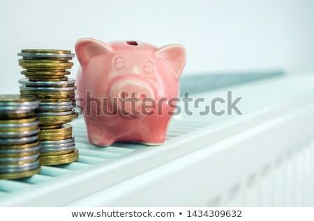 Takarékosság pénz fűtés kép persely központi Stock fotó © magraphics