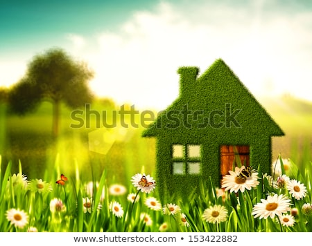 Photo stock: Printemps · maison · panoramique · vue · banlieue · maison