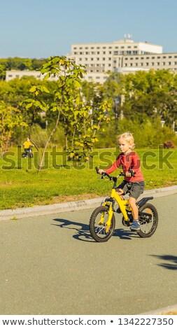 Twee gelukkig jongens fietsen park verticaal Stockfoto © galitskaya