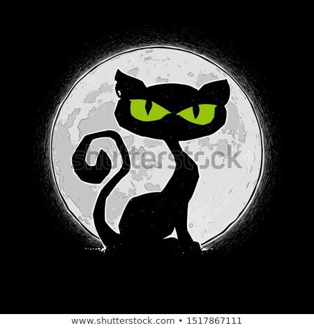 Halloween Comic Icons - Black Cat Aginst the Moon Stock photo © nazlisart