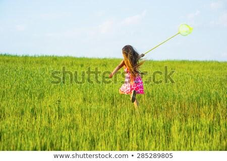 Girls Kids Jumping on Meadow Catching Butterflies Stock photo © robuart
