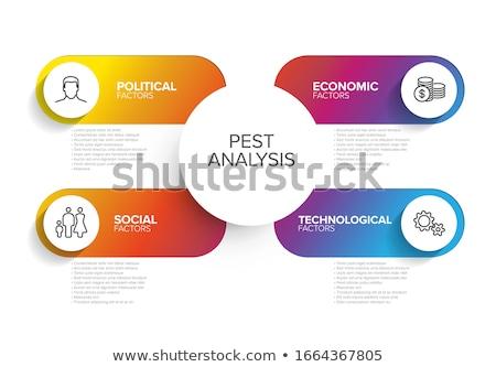 Vector PEST diagram schema Stock photo © orson