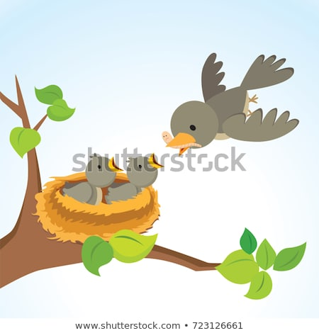 Weinig hongerig vogel uit nest Stockfoto © johnnychaos