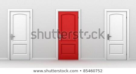 Rood · Blauw · deuren · twee · geschilderd · Dublin - stockfoto © arsgera