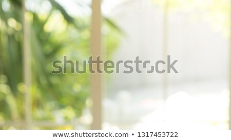 open window to tropical view stock photo © 808isgreat