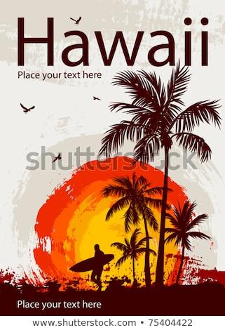 tropicali · surf · paradiso · moda · tramonto · mare - foto d'archivio © eyeidea