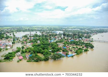 Naturaleza desastre forestales agua madera caliente Foto stock © ivonnewierink