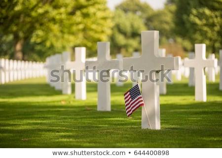 Militärischen Abteilung Friedhof Gras Flagge Stein Stock foto © alexeys