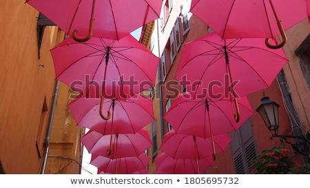 草 傘 説明する 保険 環境の ビジネス ストックフォト © chlhii1
