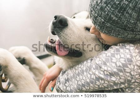 Stockfoto: Meisje · hond · winter · gelukkig · mooie · leggen