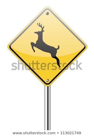 Segnale di traffico allarme animale traffico libertà segni Foto d'archivio © Ustofre9
