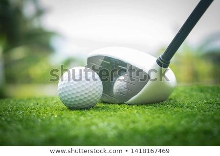 мяч для гольфа железной зеленая трава подробность макроса лет Сток-фото © juniart