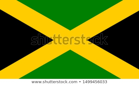 Jamaica Flag Icon Stock photo © zeffss