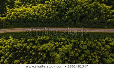 ストレート 道路 テキサス州 アメリカ 空 ストックフォト © epstock