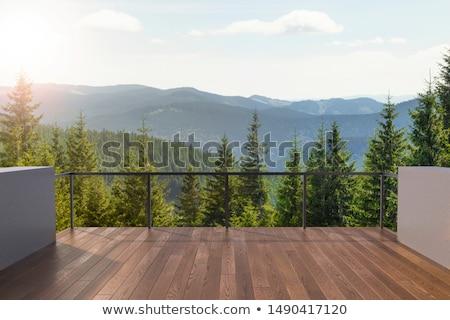 白い家 山 フィールド 紫色 花 青 ストックフォト © ottoduplessis